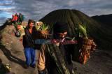 Pandemi Corona Tak Surutkan Semangat Suku Tengger Rayakan Yadnya Kasada