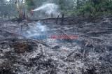 Kebakaran Lahan di Pekanbaru Berhasil Dipadamkan