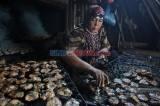 Permintaan Menurun, Pengasapan Ikan Kampung Mangut Semarang Sepi Pembeli