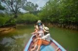 Menyusuri Hutan Mangrove Mandeh