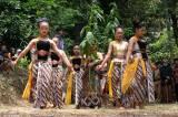 Ungkapan Rasa Syukur, Warga Gunung Sumbing Gelar Tradisi Manten Tembakau