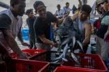 Hasil Tangkapan Nelayan Melimpah Akibat Pergantian Arus Air Laut