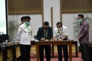 IDI: Pemanfaatan Tanaman Eucalyptus Bisa Tekan Impor Bahan Obat