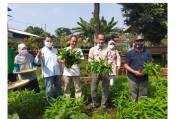 Kementan Minta Masyarakat Bogor Terus Kembangkan Pertanian Pekarangan