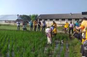 Penyuluh BPP Kostratani Jawa Barat Dapat Bekal dari ToT CSA Proyek SIMURP 2020