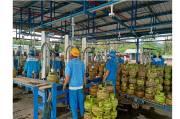 Pastikan LPG Aman, Pertamina Tambah Pasokan 130 Metrik Ton Untuk Sulbar
