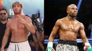 Lima Peraturan Aneh Duel Ekshibisi Mayweather Jr vs Logan Paul