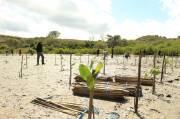 Traveloka Dukung Pemulihan Pariwisata di Mandalika