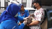 Sumut Masuk 5 Besar Provinsi dengan Kasus Rabies Tertinggi di Indonesia