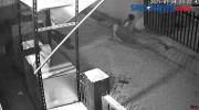 Duel 2 Sopir Truk di Cilincing Hingga Tewas Terekam CCTV