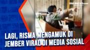 Lagi, Risma Mengamuk di Jember Viral di Media Sosial