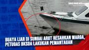Buaya Liar di Sungai Arut Resahkan Warga, Petugas BKSDA Lakukan Pemantauan