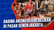 Daging Anjing Dijualbelikan di Pasar Senen Jakarta
