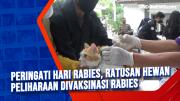 Peringati Hari Rabies, Ratusan Hewan Peliharaan Divaksinasi Rabies