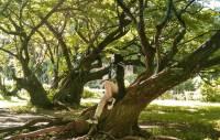 Hutan Kota di Jabodetabek yang Bagus Buat Jadi Spot Foto