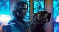 Keanu Reeves Resmi Main John Wick 5, Syuting Sekaligus dengan John Wick 4