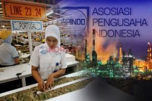 Dana Pemulihan Ekonomi Nasional Rp677 Triliun Dinilai Belum Cukup