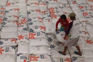 Sepanjang Semester 1 2020, Bulog Serap 700 Ton Beras Petani