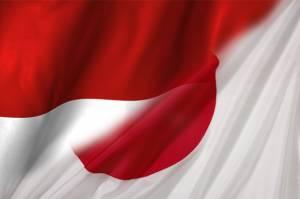 RI Salah Satu Tujuan Lawatan Pertama PM Jepang, Begini Respons Jokowi