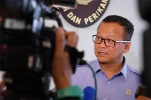 KPK: Menteri Edhy Prabowo Ditangkap Terkait Ekspor Benih Lobster