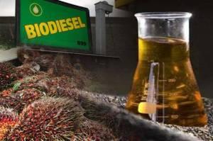 Dukung Energi Hijau, Produsen Biodiesel Terus Tingkatkan Kapasitas Produksi
