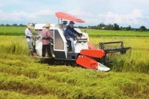 Dorong Milenial Terjun dan Terapkan Teknologi di Sektor Pertanian