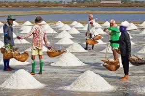 Produksi Garam Nasional: Besar Target daripada Realisasi