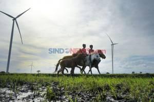Energi Terbarukan Penting untuk Atasi Tiga Krisis