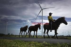 Pemerintah Diminta Permudah Izin Penggunaan Energi Terbarukan