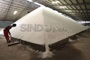 Punya Banyak Keunggulan, Garam Produksi UMK Bali Diekspor Hingga Amerika