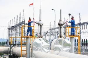 Lampaui Target, Kinerja Pertamina Geothermal Energy (PGE) 2020 Catatkan Pertumbuhan yang Positif di Tengah Pandemi
