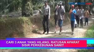 Cari 3 Anak yang Hilang, Ratusan Aparat Sisir Perkebunan Sawit