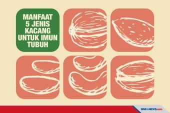 5 Jenis Kacang Ini Dapat Meniingkatkan Kekebalan Tubuh