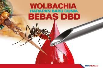 Metode Wolbachia Jadi Harapan Baru Dunia Bebas dari DBD