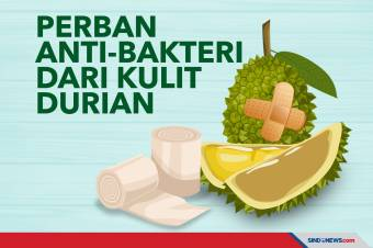 Ilmuwan Singapura Ubah Kulit Durian untuk Perban Antibakteri