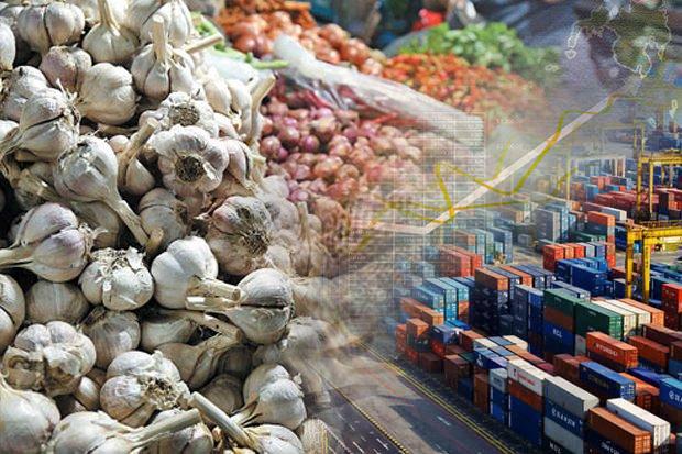 Kemendag Klaim Harga Bawang Putih dan Bombay Terkendali
