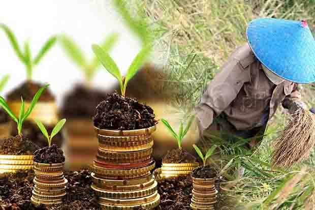 Mendorong Anak Muda Terjun ke Dunia Pertanian