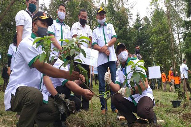 Perhutani KPH Surakarta Bersama JALAK LAWU Tanam Pohon di Lereng Lawu