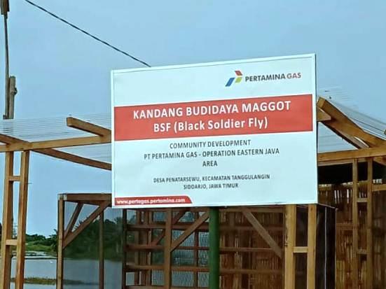 Kreatif, Kampung Ikan Asap Penatarsewu Kini Budidayakan Maggot BSF