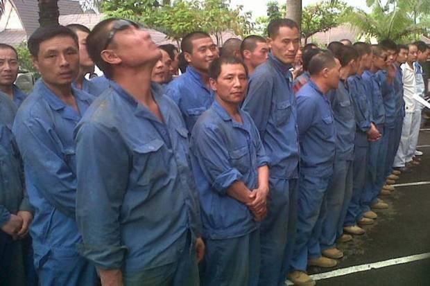 Dari Rencana 500, Sudah 261 TKA China yang Masuk Konawe
