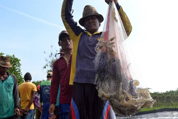 Kemenperin Kembangkan Industri Udang agar Ekspornya Kian Tegak