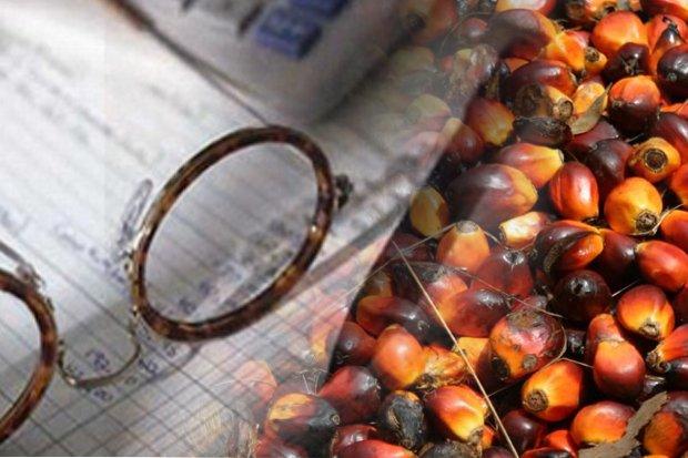 Ekspor Minyak Sawit Terkontraksi 11%, Kecuali ke Tiga Negara Ini