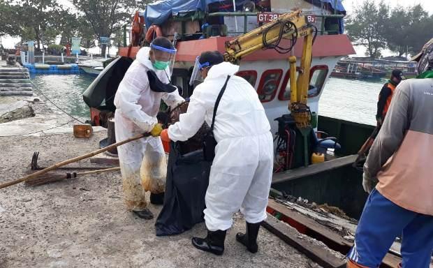 Selidiki Ceceran Minyak di Pulau Pari, PHE OSES Bantu ...