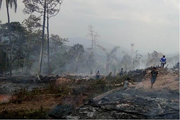 Kabut Asap dan Covid-19 Tingkatkan Risiko Kematian, Greenpeace Singgung RUU Cipta Kerja