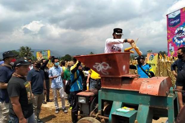 Bupati Batang Ajak Petani Tingkatkan Produktivitas Jagung