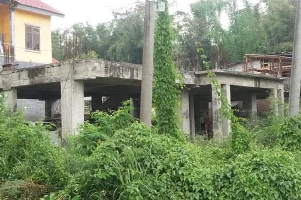Mangkrak, Wisma Pemda Tana Toraja Kini Jadi Tempat Tanaman Liar