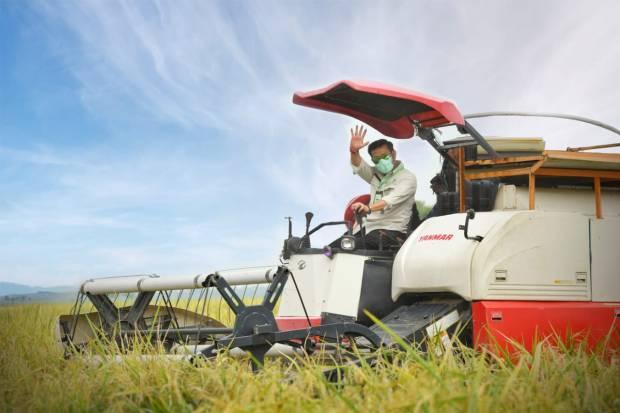 Jumlah Penduduk Bertambah, Sektor Pertanian Kian Penting