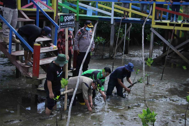 Gojek dan Wagub Sulsel Tanam 1.000 Bibit Mangrove di Lantebung
