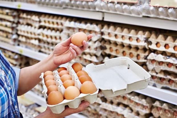 Awas Pandemi Baru, Pelaku Bisnis Harus Hilangkan Kandang Telur Baterai