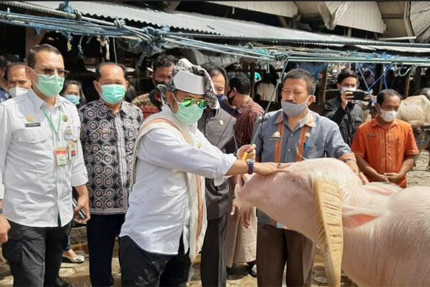 Menteri Pertanian Janji Benahi Pasar Hewan Bolu Toraja Utara
